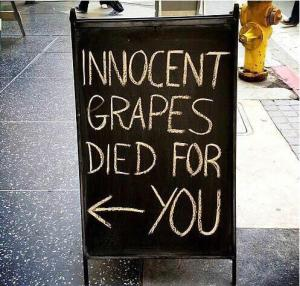 Innocent grapes died for you